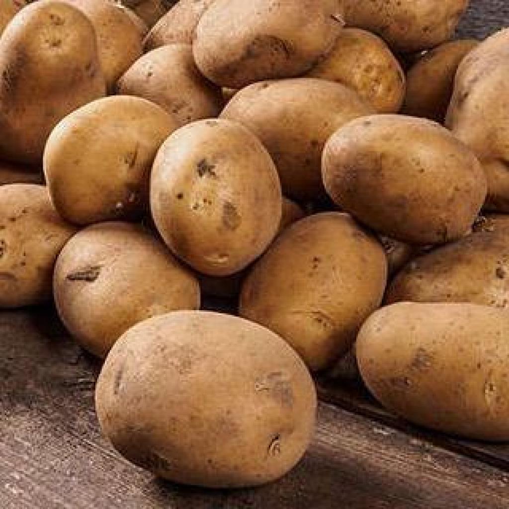 Картопля біла від OVO
