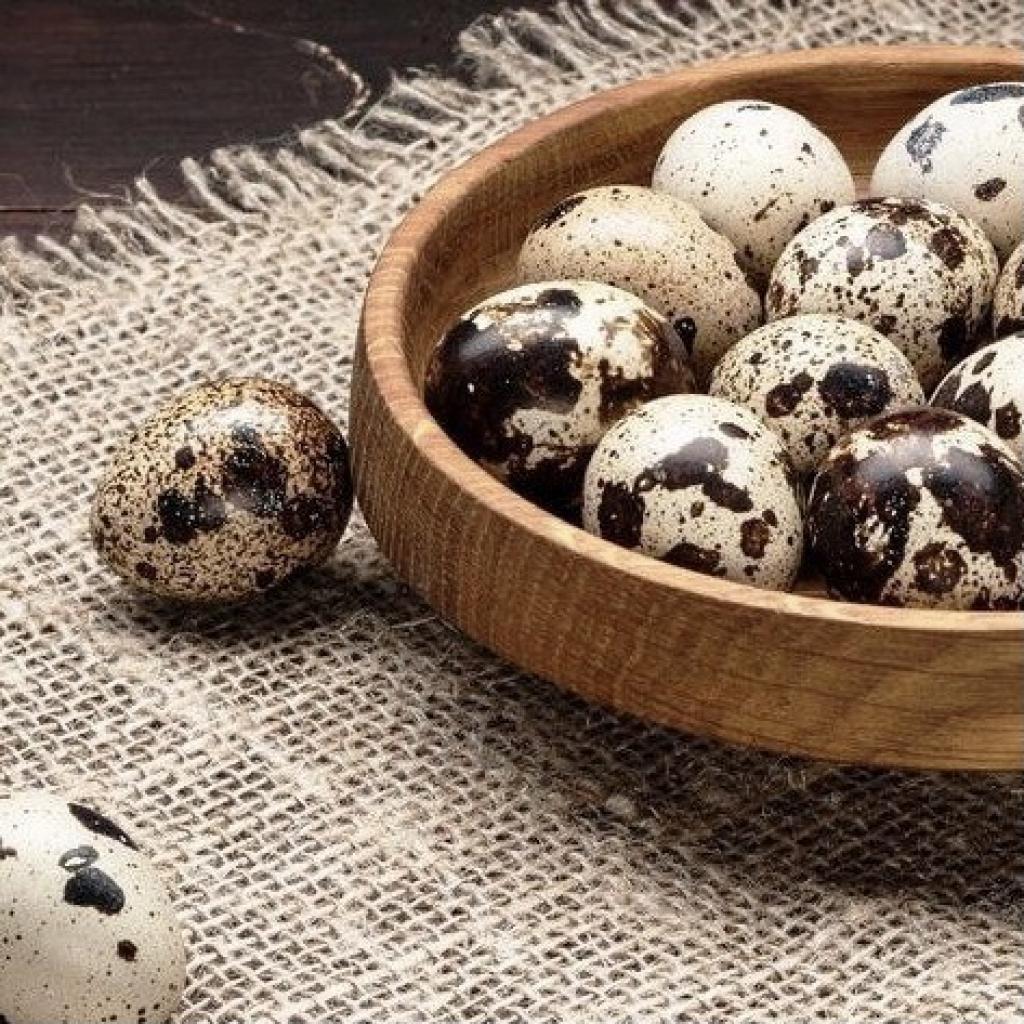 Яйця перепелині 20шт Ясенсвіт від OVO