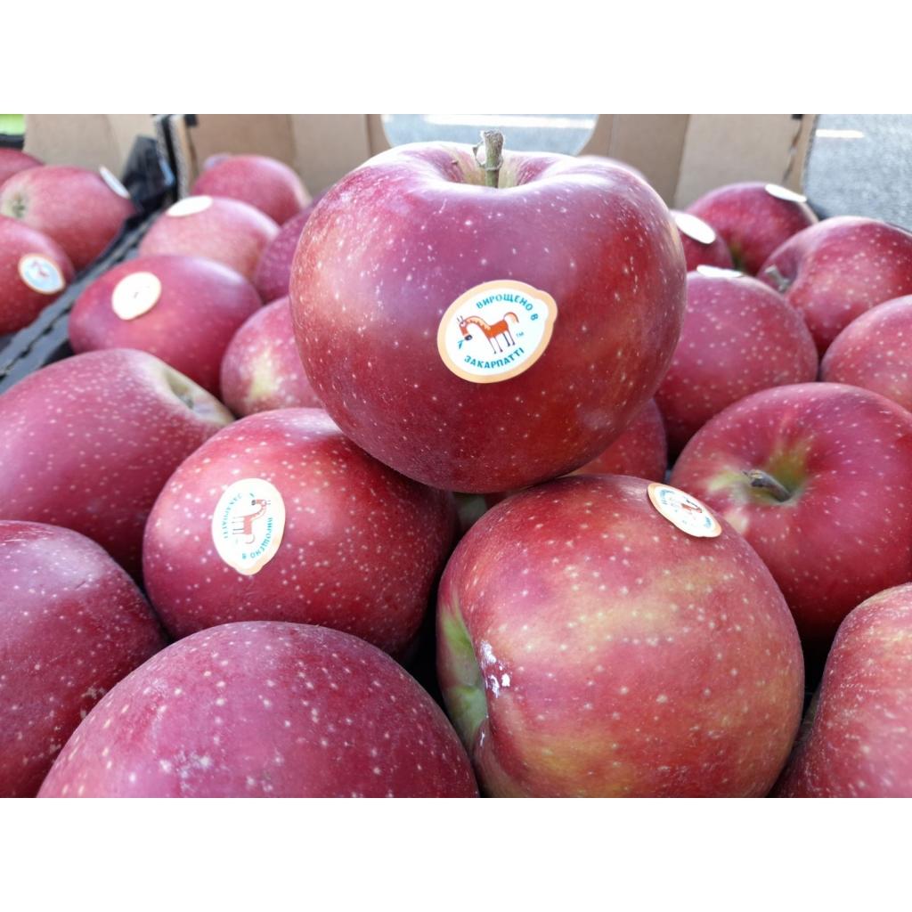 Яблуко Ред принц ТМ Коник від OVO