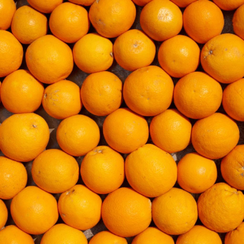 Апельсин фреш від OVO